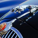 1964 Jaguar MK2 Saloon Hood Ornament 2 by Jill Reger