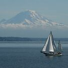 Puget Sound by Dave Davis