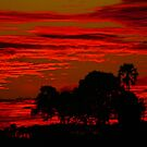 May Botswana sunset by jozi1