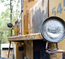 Headlight by Lisa Milam