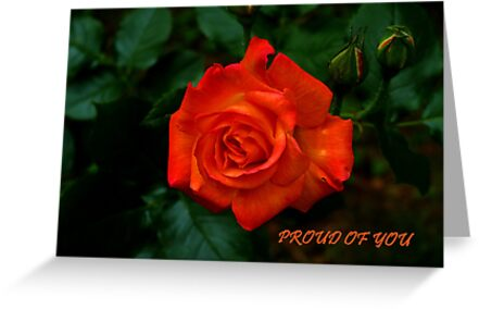 Proud Of You by Gail Bridger