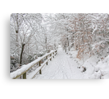 The winter lane Metal Print