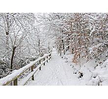 The winter lane Photographic Print