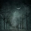 When the moon is tired, it rest in the arms of nature by LarsvandeGoor