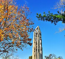 Moser Tower and the Naperville Carillon by James Watkins