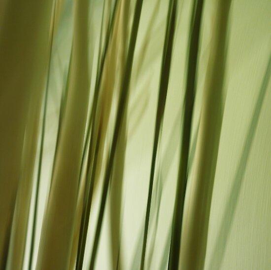 Vertical II by Lena Weiss