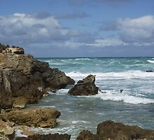 Canunda rough seas on broken rocks by Carmel Renehan