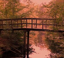 Bridge, Stream and Autumn Forest by ienemien