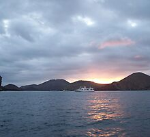 Galapagos Overlook by Nina Brandin