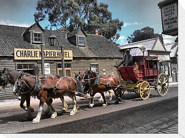 Cobb &amp; Co at Sovereign Hill by Larry Davis