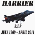 RAF HARRIER Rest In Peace by Rees Adams
