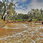 Our Land Australia by Terry Everson