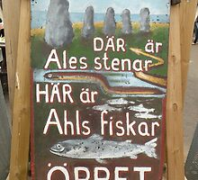 Ales Stenar Sign - Skane, Sweden by Nina Brandin