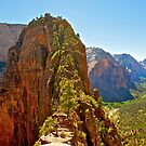 Angel's Landing by Bruce Alexander