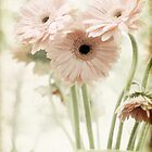 Grungy Pink Daisies by Wendy Ramos