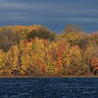 Ottawa River Fall Colours 03 by Stephen Stephen