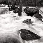 Spring Runoff by Harry Snowden