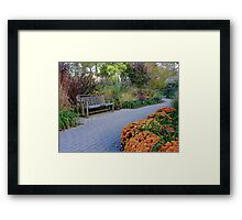 Autumn In Full Bloom Framed Print