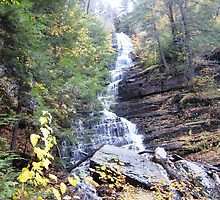 Lye Brook Falls, Vermont by chipster