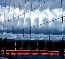 Bus, Bus, Bus by Valerie Rosen