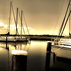 Sailboats by Phillip  Judy