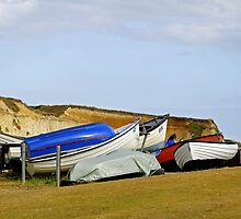 Dinghy Park, Freshwater Bay by Rod Johnson