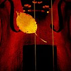 Leaf by Mojca Savicki
