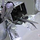 Silver - A Bit Andy Warhol  by Carol James