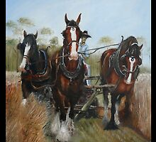 HORSE POWER by Wayne Dowsent
