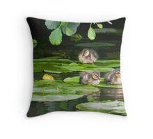 Resting Mallard Ducklings  Throw Pillow