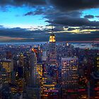 New York City Skyline by DamianBrandon
