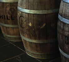 Wine barrels by Oceanna Solloway