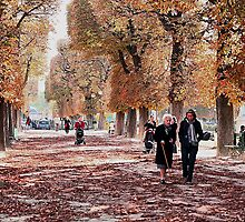 October walk by Fran0723