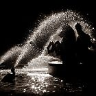 Horses fountain by Laurent Hunziker