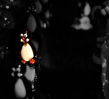 Unique Penguin by buttonphoto