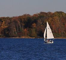 Sailing into Fall by Tony Wilder