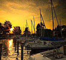 Golden Sunset on Attersee by Delfino