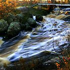 Rennie Falls by Larry Trupp