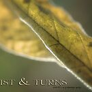 TWISTS &amp; TURNS  by Vicki Ferrari