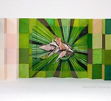 Fantail Palm Plateau ~ Artist Book by Kerryn Madsen-Pietsch