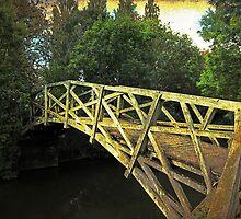 The Mathematical Bridge, Oxford, UK by buttonpresser
