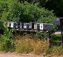 Set of Rural Mail Boxes by Joy  Rector