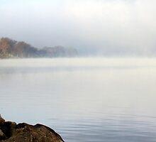 Misty Morn by Susan Vinson