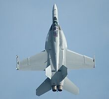 Zoom Climb - Hornet, Williamtown Airshow 2010 by muz2142