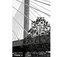 This is our bridge Photographic Print