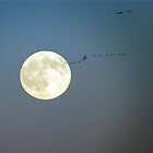 Flight Over The Moon by Mindy Miller