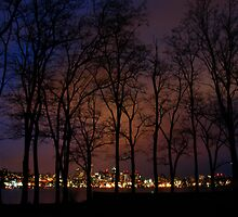 The View from Gasworks Park - Seattle by Honario