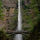 SUMMER SPECTATOR'S AT MULTNOMAH FALLS by Charlene Aycock IPA