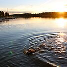 Sun dogs by LadyFi