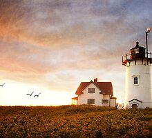 Race Point lighthouse by bettywiley